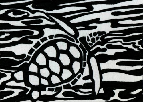 top view of sea turtle art