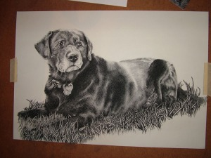 final update of portrait