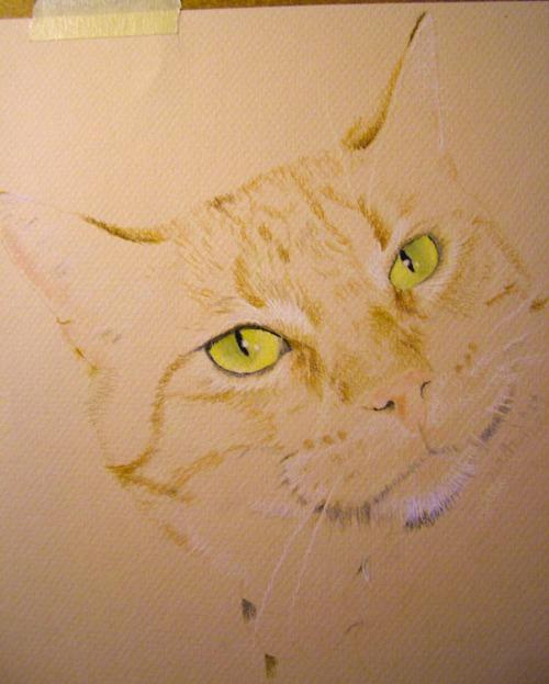 cat pastel drawing