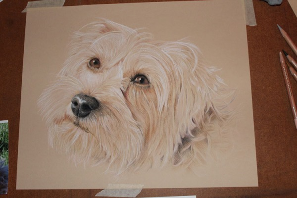 drawing painting dog