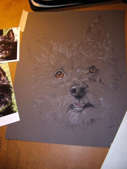 dog drawing pastel painting