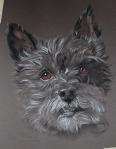 dog drawing painting