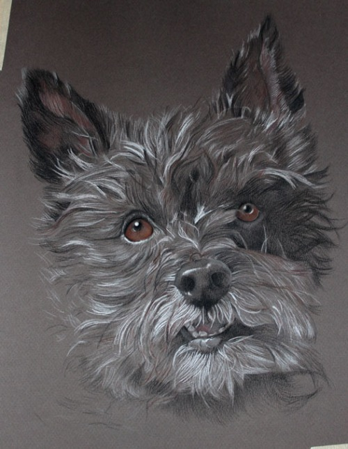 dog drawing painting