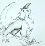 Ink drawing Gryphon