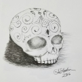 Ink drawing skull