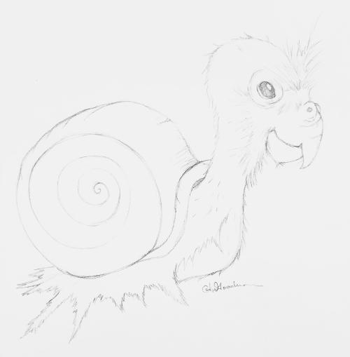 Sketch snail bird
