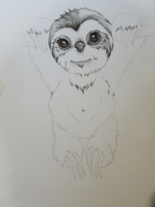 Cute ink drawing sloth