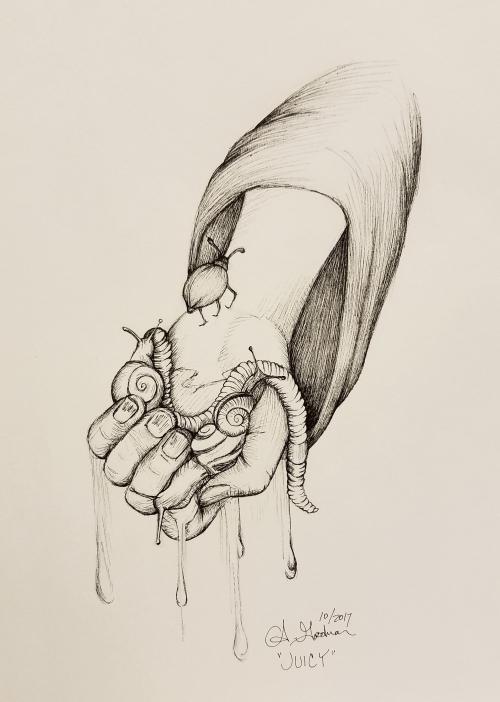 Inktober Day 23 Juicy - Midnight Snack ink drawing by alecia goodman