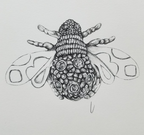 Queen Bee Brooch Ink drawing Work In Progress 2018 by alecia goodman