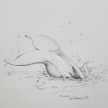2018 Inktober Day 12 Whale ink drawing by alecia goodman