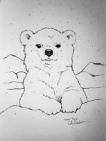 Polar bear cub ink drawing by Alecia Goodman