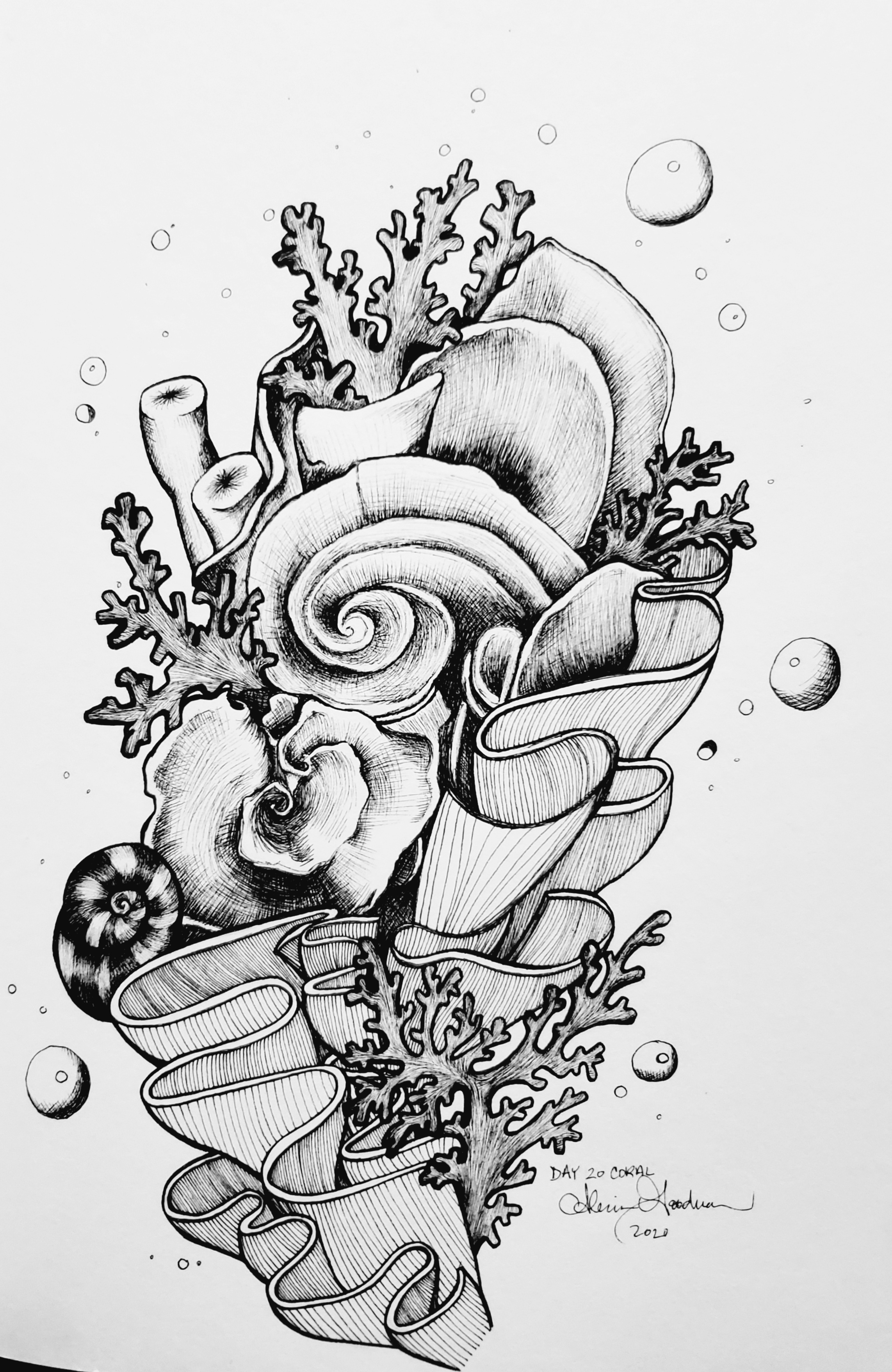 Inktober Day 20 Coral ink drawing with bubbles alecia goodman 2020 to present